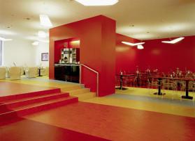 Pavimenti in Linoleum, PVC  e Gomma